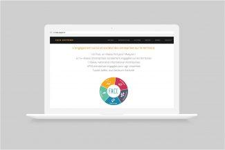 Site Web FACE Aveyron